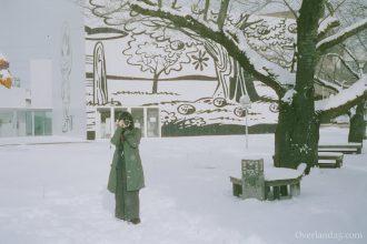 CineStill film 50Daylight 【フィルム作例・レビュー】